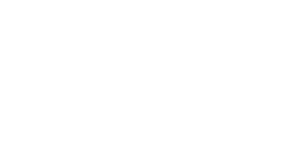 my faster site white logo